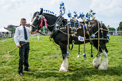 Great Eccleston & District Agricultural Show Best Dressed Horse 