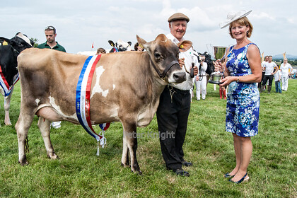 GE Show 2014 Champion Jersey 