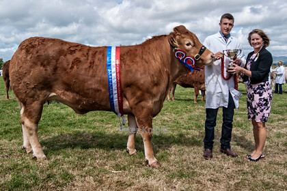 Great-Eccleston-Show-201519072015 00007 