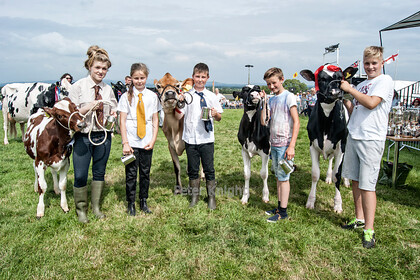 GE Show 2014 Young Dairy Cattle Winners 