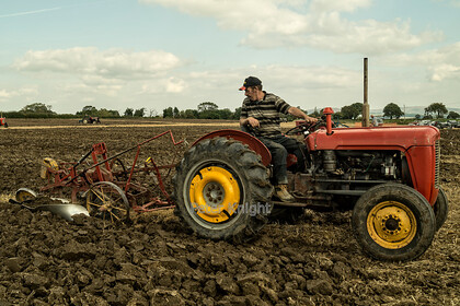Is-that-straight 